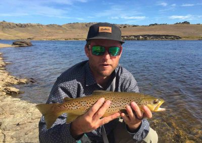 Middle earth brown trout